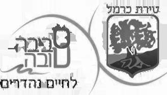 לוגו עיריית טירת כרמל
